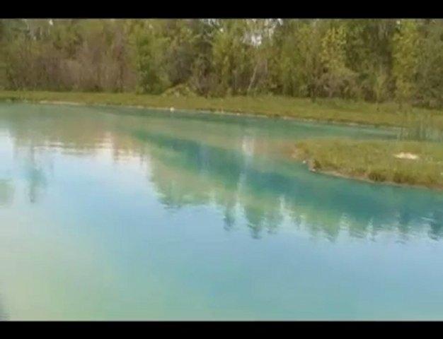 Pond Dye