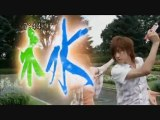 ShinkenGreen, Tani Chiaki ! - Samurai Sentai Shinkenger MV