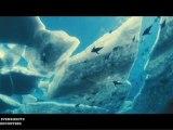 Océans • Rencontre avec Jacques Perrin