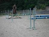 Saut d'obstacle chevaux 02