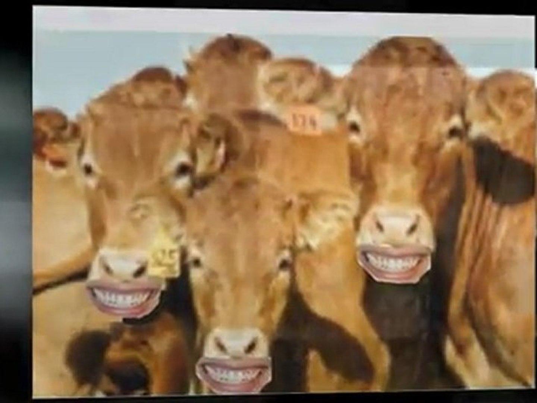 Dental Boise – Beautiful Smiles – Beautiful You
