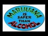 Prohibition finie?! Origine de cette prohibition! Sativa
