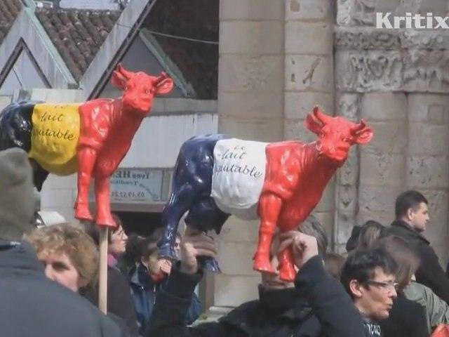 Manifestation de l'APLI à Poitiers