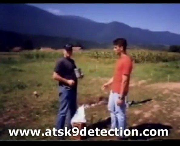 Landmine Detection Dog Training | Drug Detection Dog …