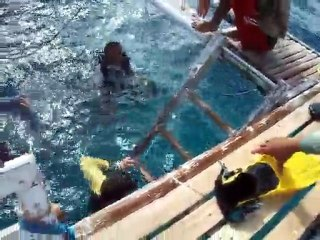 Philippines - Dumaguete - ApoIsland - Dive