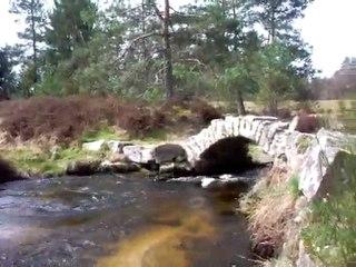 Pont de Senoueix Creuse_7366