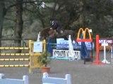 rebelle cso jeunes chevaux 5 ans b hennebont 31 mars 2010