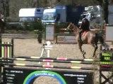 quinze mai cso jeunes chevaux 6 ans b hennebont 31 mars 2010