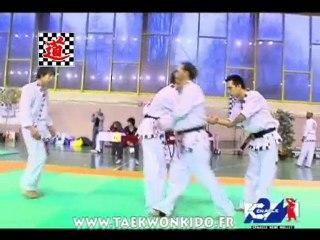 Clip Taekwonkido