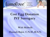 Infertility Investment Cost Egg Donation IVF Surrogacy
