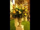 Floralies de Gand Belgique.