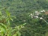 Bolivie - Coroico, c'est quoi, le cri du coq ? (2)
