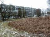 projet de réalisation de bassin dans le parc du lycée