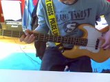 Red Hot Chili Peppers - She's Only 18 Bass Cover