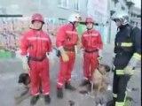 Journée d'enfer des Sapeurs Pompiers...Au coeur du feu
