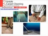 Kansas City Carpet & Upholstery Cleaning - Shain Carpet Cle