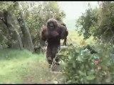 Southern California Bigfoot Sighting