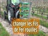 Vignoble du Val de Loire - le palissage