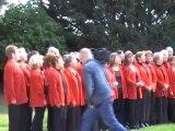 Genas (69740) cérémonie 8 mai 2010
