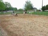Pony games avec Biscotte