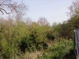 jardin du souvenir en pays lorrain FAULx