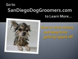 Pet Grooming - Find the Best Dog Groomers in San Diego, CA