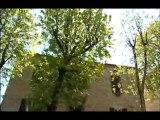 Fenêtre sur... la gastronomie du Tarn à Cordes sur Ciel