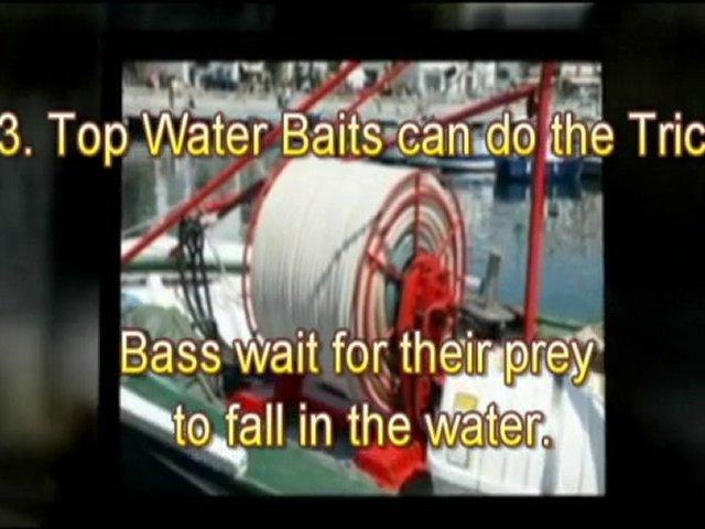 Free Bass Fishing Tips: Best Fishing Secrets