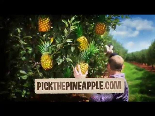 Advertising Agencies Nashville, Pineapple Advertising