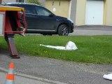 Intervention des pompiers de Château-Salins sur un essaim
