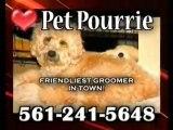 Pet Pourrie, Dog grooming, pet  groomer, Grooming salon, Bo