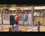 Aimargues -rodeo sur les taureaux