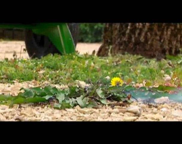 La Ville de Niort agit pour restaurer la biodiversité