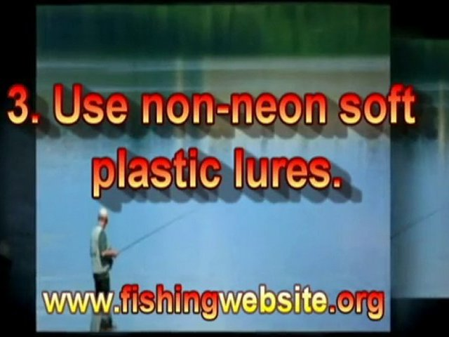 Bass Fishing – Saltwater Fishing Secret