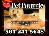 Pet Pourrie, Pet Grooming! Dog Groomer, Expert Groomer, Boc