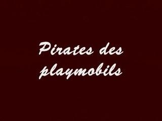 pirates des playmobils