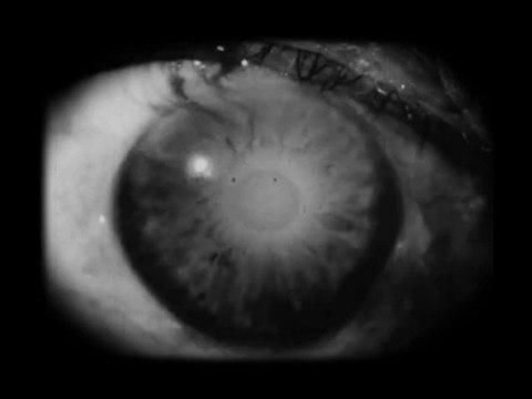 Ulysse Clandestin un film de Thomas Lacoste