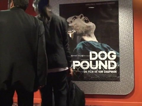Dog Pound : La tournée