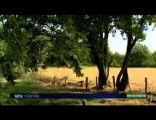 Boischaut sud - Résumé du film et Interviews FR3