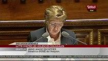 SEANCE,Séance - Proposition de loi sur les violences faites aux femmes