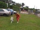 Douchka ( 8 mois) fait du sport avec sa maman