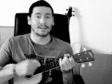 La Mauvaise Réputation ( Georges BRASSENS au ukulele )