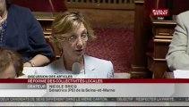 SEANCE,Séance - projet de loi de réforme des collectivités territoriales