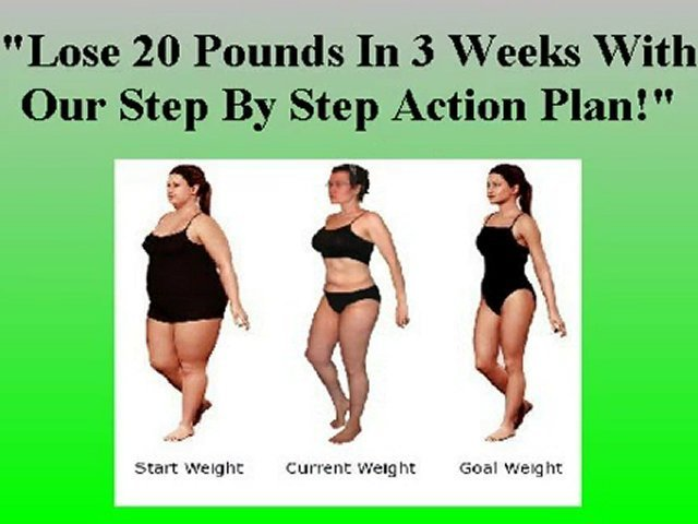 Free Weight Loss Plans | Free Weight Loss eBooks