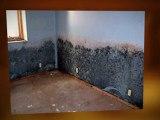 Flood Damage Cleanup Laredo Water Removal Restoration FAST