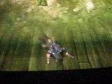 The Legend of Zelda Twilight Princess Bug Flèches Infinies.