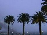 Fog shrouds Sydney and Brisbane