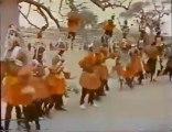 Sur les traces du renard pâle, en pays Dogon (partie 2)