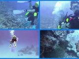 15.- DIVING LESSONS - LECCIONES DE BUCEO