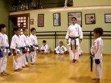 Karate Japones